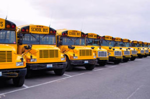 Multiple-School-Buses